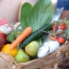 New resource package to improve nutrition in remote communities
