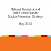 National Indigenous Suicide Prevention Strategy report