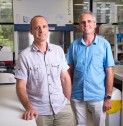 TerritoryQ: War on Malaria, Prof Ric Price and Prof Nicholas Anstey